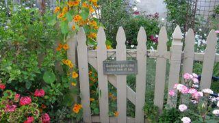 GATE IN SPRING