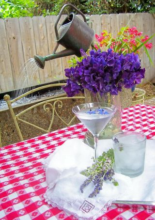 Picnic time martini & sparkling water for herbal drinks