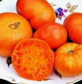 Amana_Orange_Tomato_Seeds