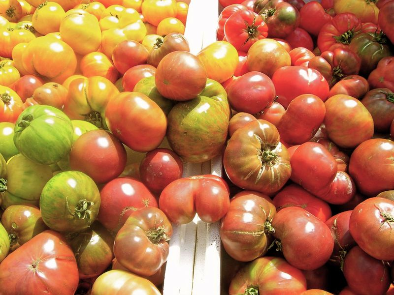 Farmers market heirloom tomatoes